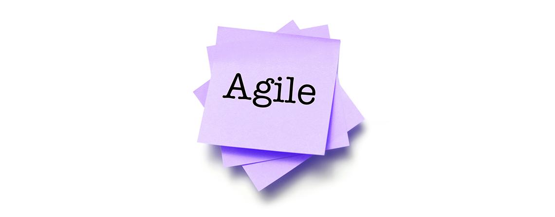 Agile VE